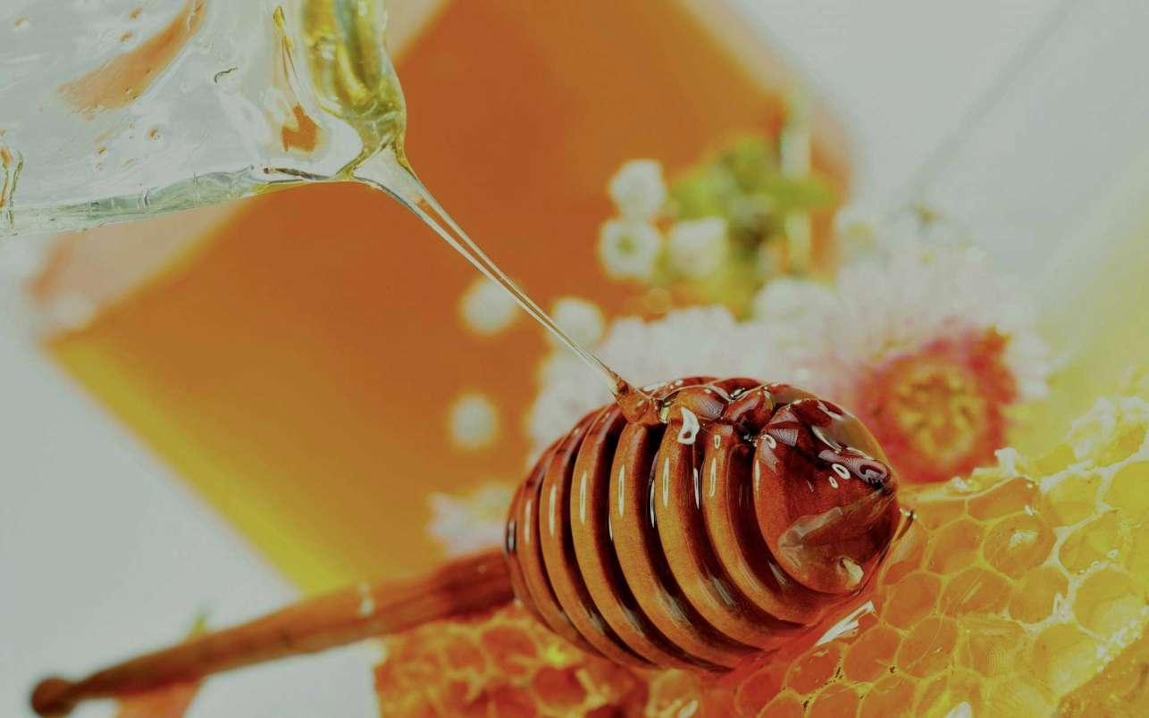 μελισσοφαρμα